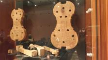 imm_6162_violino.jpg